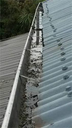 Gutter Cleaning and Maintenance Services